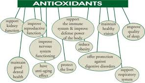 antiox-2